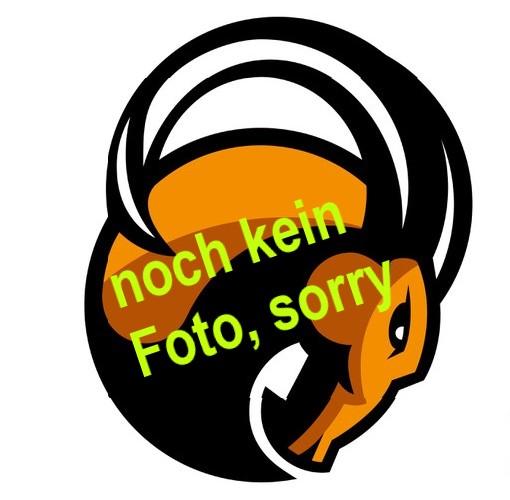 Logo Kopf Foto